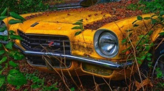 Elhagyatott autólegendák: avagy így néz ki több százmillió forint ablakon kidobott pénz